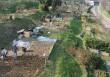 Lo sviluppo dell'agricoltura urbana e periurbana