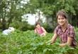 L'agricoltura sociale genera comunità